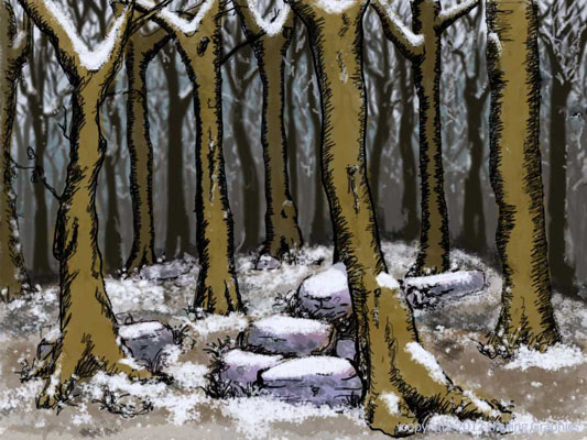Wind in the Willows: The Wild Woods in Winter